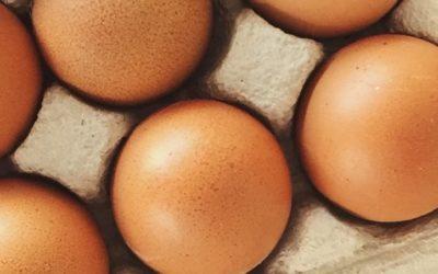 Nietolerancja pokarmowa na jajka – przyczyny, objawy